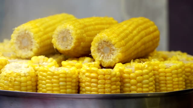 Street fast food. Cooking corn in boiled water. Sweet corn sold at city market harvest festival. Concept healthy lifestyle. Celler gives cobs corn to buyer and takes money video