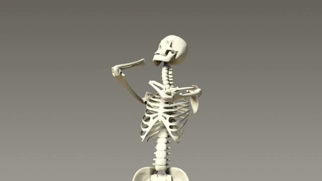 Stretching Human Skeletal video