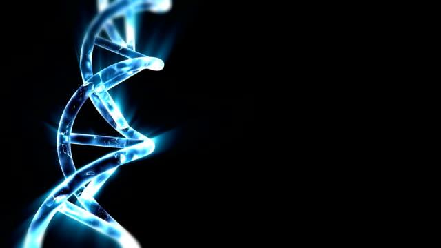 Chaîne d'ADN - Vidéo