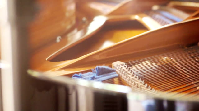 Strings inside the grand piano.