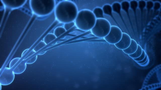 vídeos y material grabado en eventos de stock de secuencias de adn en fondo azul - cromosoma