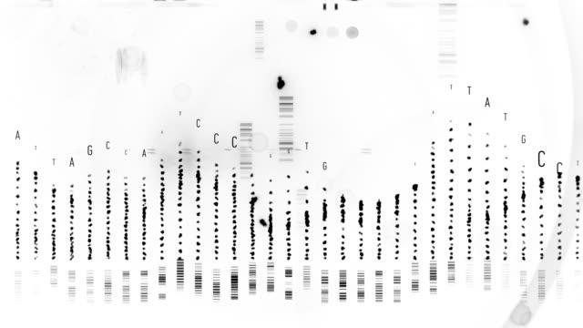vídeos y material grabado en eventos de stock de cadenas de adn - cromosoma