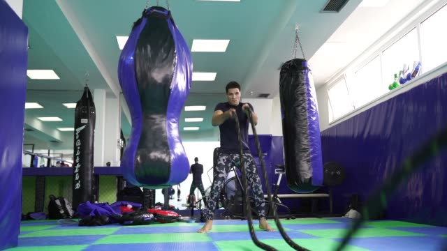 Strong man exercising with battle ropes One man, young man using battle ropes for training in gym. macho stock videos & royalty-free footage