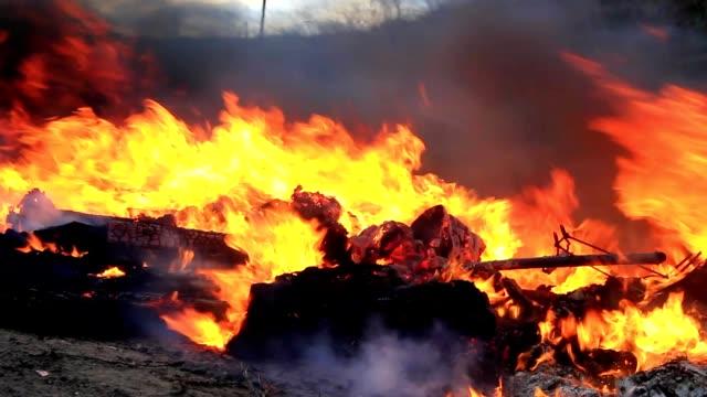 stark vind och sprutar eld - designelement bildbanksvideor och videomaterial från bakom kulisserna