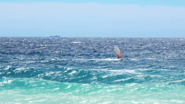 Strong windsurfer sailing on waves in summer, active healthy lifestyle, slow-mo video