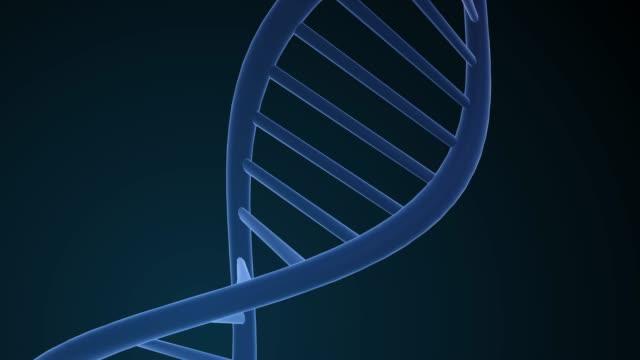 vídeos y material grabado en eventos de stock de estructura del adn - ácido desoxirribonucleico.  animación 3d para la investigación científica médica del arn y el estudio del laboratorio molecular genético de la biología. - hélice forma geométrica