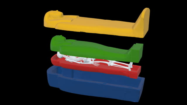 EGYPTIAN SARCOPHAGUS - Structure scheme With skeleton video