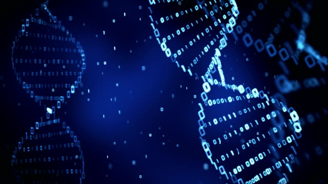 DNA structure (loop)