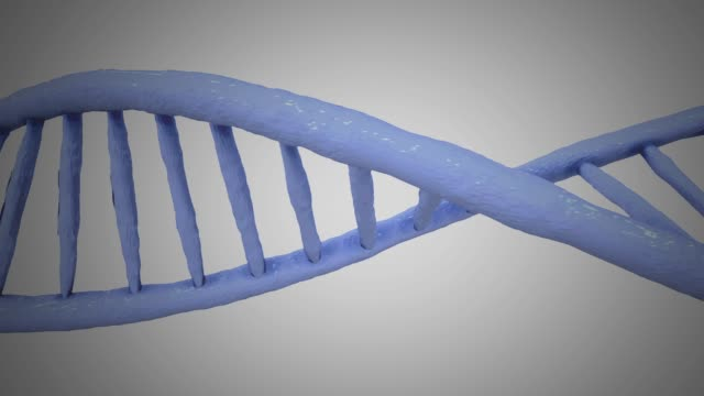 dna structure - family trees stock videos and b-roll footage