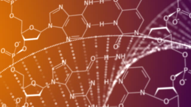vidéos et rushes de structure adn  - protéine