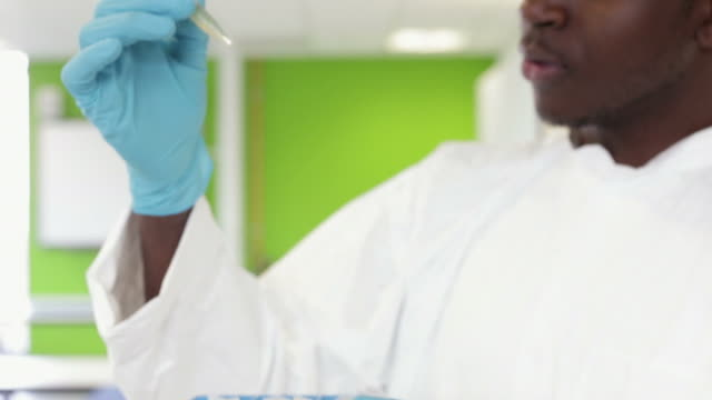 Student Scientist In Laboratory Inspecting Sample video