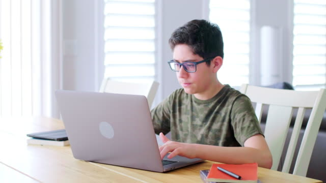 Students Learning via Computer at Home - video
