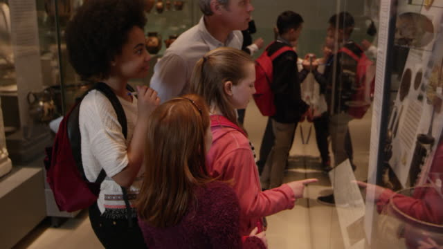 students look at objects in cases on museum trip shot on r3d - museo video stock e b–roll