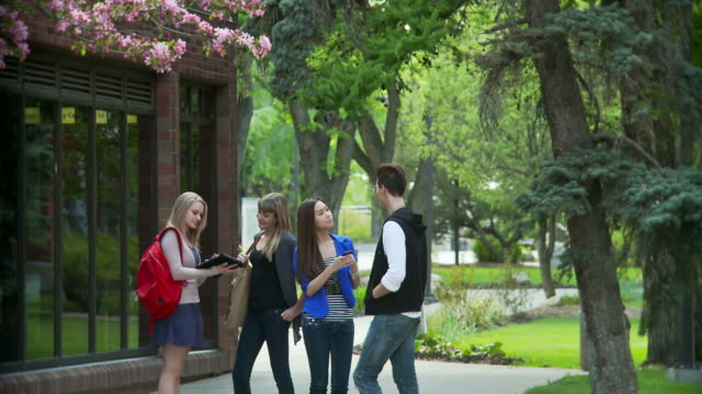 Students on campus at a university video
