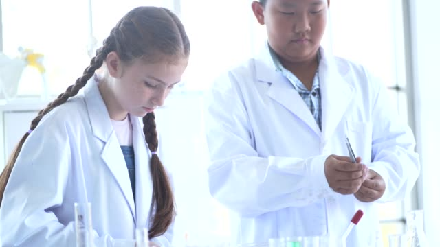 Students study during science class  In Laboratory