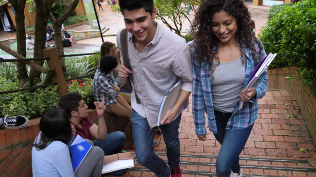 Students walking up the stairs of the college campus while others are sitting on the sides Students walking up the stairs of the college campus while others are sitting on the sides talking and smiling university student stock videos & royalty-free footage