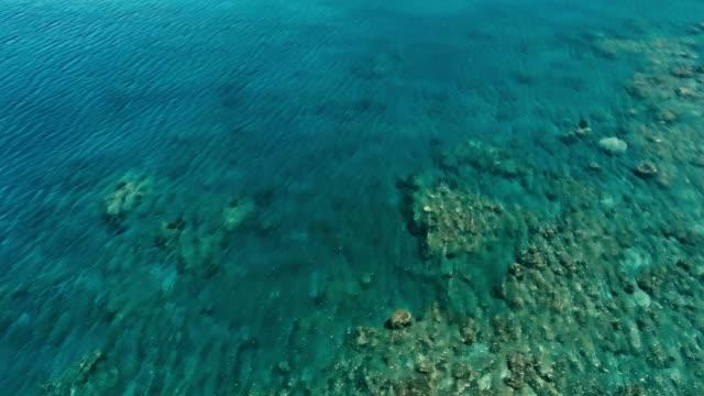 vídeos y material grabado en eventos de stock de impresionante imagen aérea drone de un gran arrecife de coral en agua plana clima tranquilo y colorido mar océano cama alrededor de una pequeña isla tropical aislada remota - micronesia