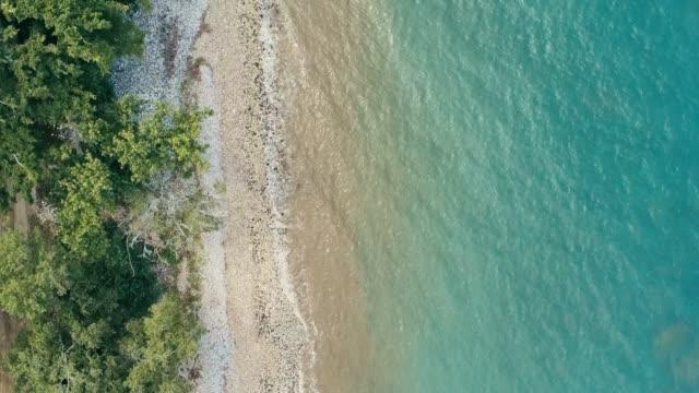 vídeos y material grabado en eventos de stock de impresionante imagen geométrica mínima de drone aéreos de una costa remota mar tropical selva de exuberante selva tropical de playa rocosa y agua azul cristalino de la parte superior mirando hacia abajo - micronesia