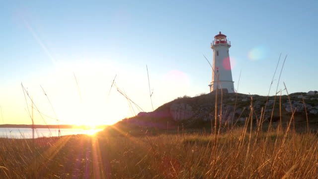 vídeos de stock e filmes b-roll de stunning concrete lighthouse on rocky and grassy seashore at golden light sunset - torre estrutura construída