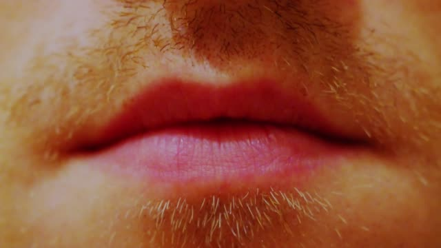 stupid mustache growth time lapse man mouth with lips in macro view beard stock videos & royalty-free footage