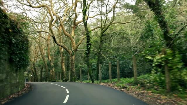郊外 road - 石垣点の映像素材/bロール