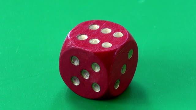 success concept. ladybug ladybird on game dice video