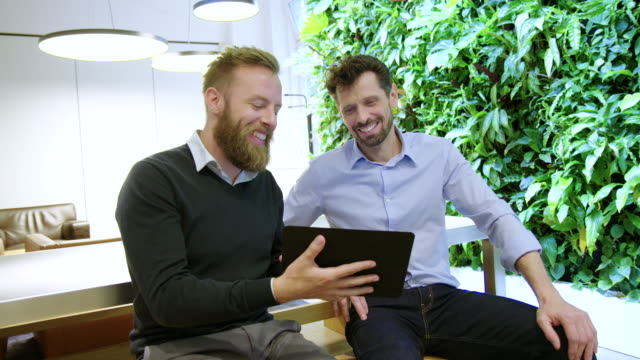 Successful business partners working together in office