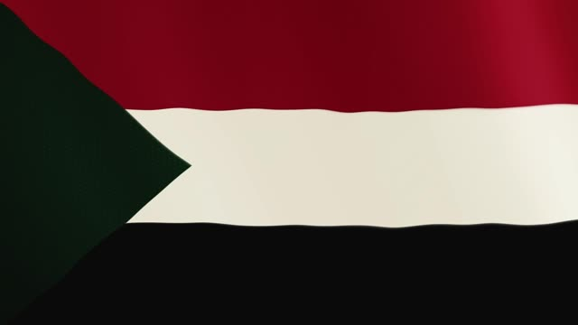 Sudan flag waving animation. Full Screen. Symbol of the country video