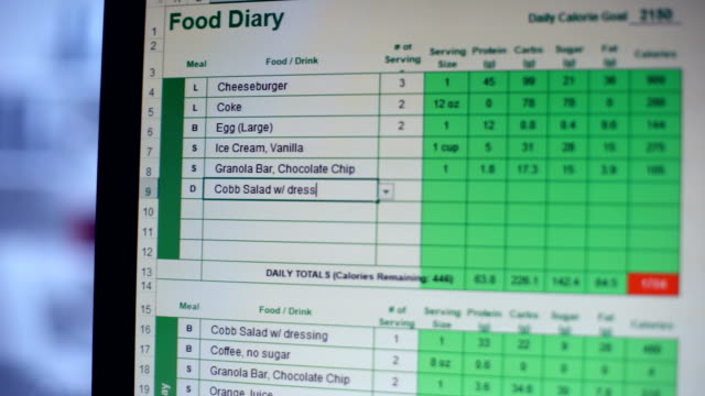 Suffering from anorexia person keeping online food diary, counting calories