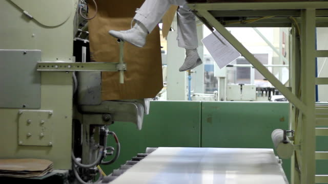 Sugar bags on conveyor in a Warehouse video