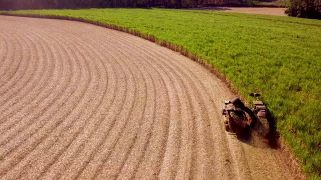 sugar cane harvesting in brazil - сахарный тростник стоковые видео и кадры b-roll