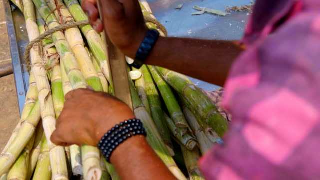sugarcane with the aid of a special machine squeeze out juice in delhi, india - canna da zucchero video stock e b–roll