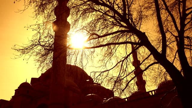 Suleymaniye Mosque, Istanbul, Turkey Suleymaniye Mosque at sunset, Istanbul, Turkey sepia toned stock videos & royalty-free footage