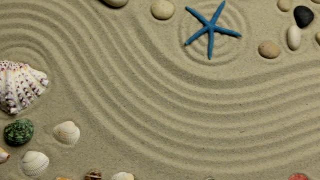 Fond d'été - coquilles, étoiles et pierres sur le sable de zigzag. Crane abattu. - Vidéo