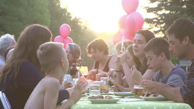 Summer BBQ Large Family Celebration Nature video