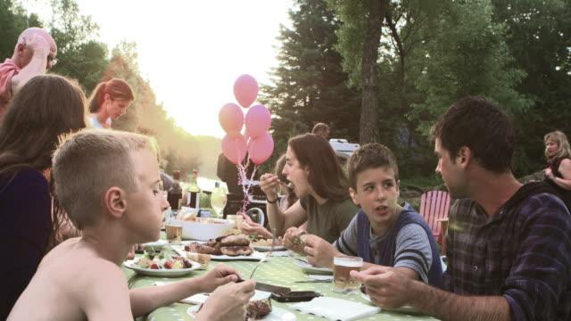 Gran celebración familiar de verano barbacoa naturaleza - vídeo