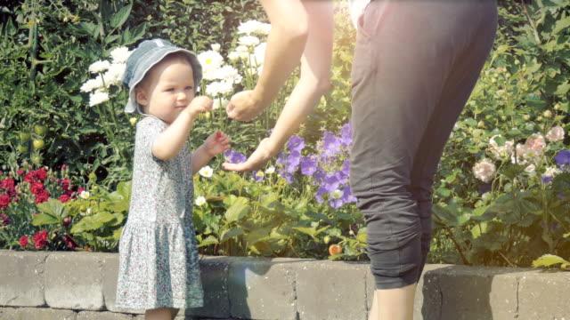 sommarbär - dansk kultur bildbanksvideor och videomaterial från bakom kulisserna