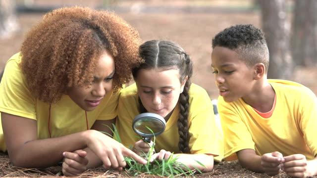 sommer lager berater mit kindern erforschen die natur - ferienlager stock-videos und b-roll-filmmaterial