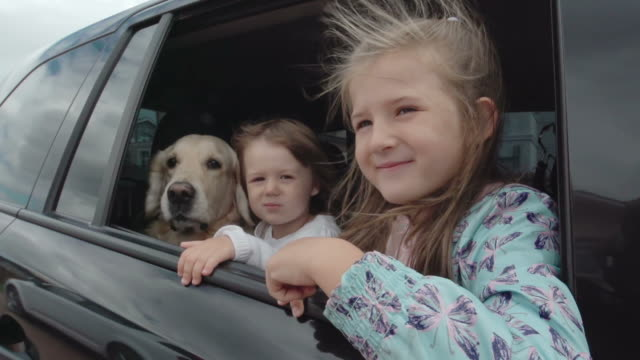 Summer Car Trip video