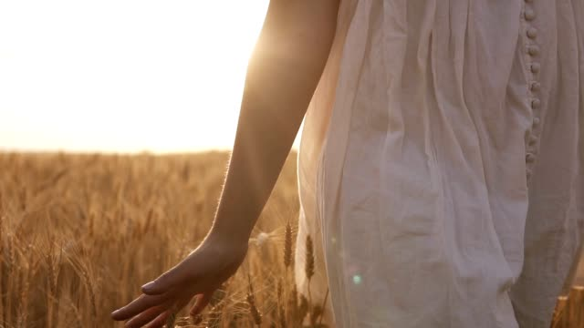 summer day, woman in white is running through wheat in clear wide field. sun light, daytime - data scritta video stock e b–roll