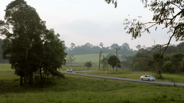 Summer field and car on road countryside video