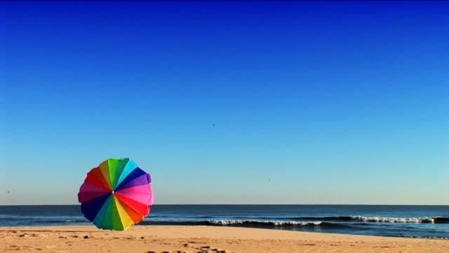 Summer Holidays video
