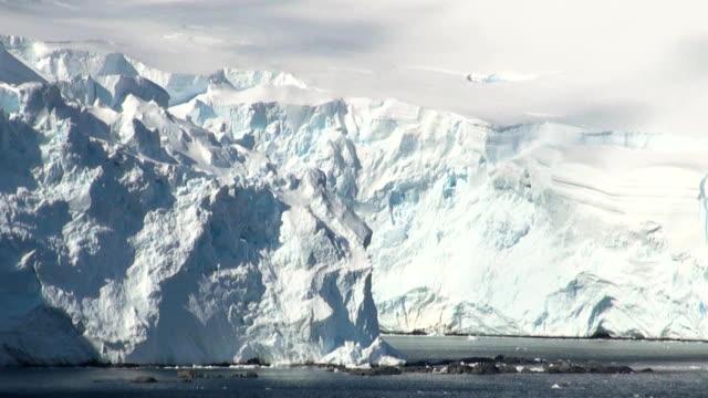 sommer in der antarktis - eisklettern stock-videos und b-roll-filmmaterial