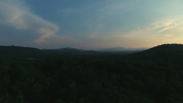 summer in appalachia - dusk stock videos & royalty-free footage