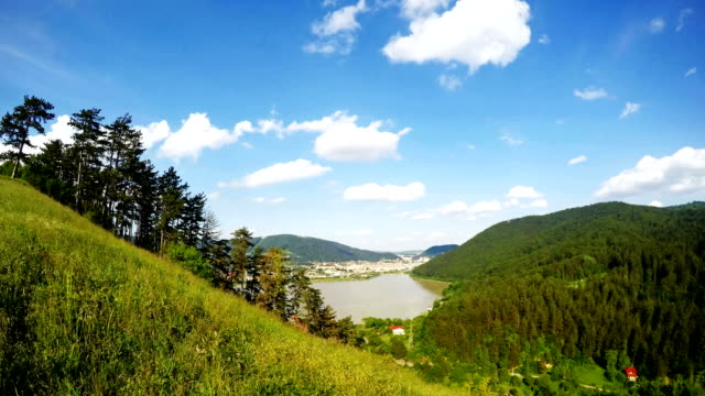 Summer lake and small town landscape video
