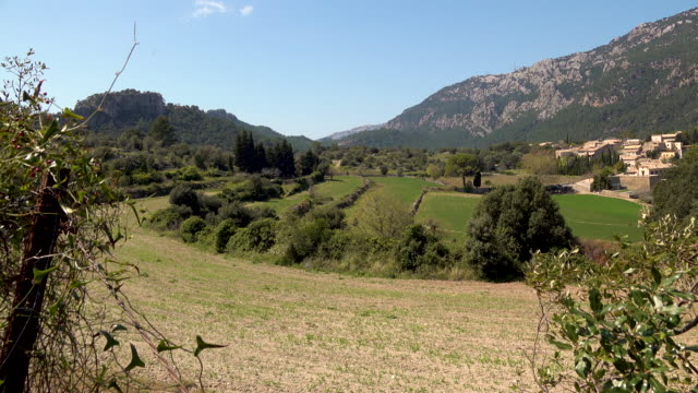Summer landscape in mountain valley video
