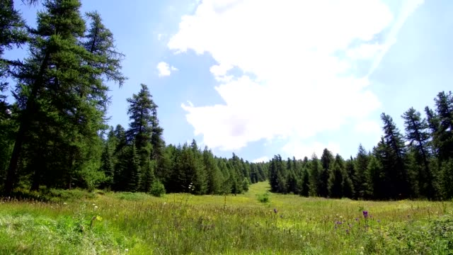 summer landscape mountain, france, vacation nature travel landscape video 4k - hautes alpes stock videos & royalty-free footage