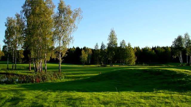 summer landscape, panorama video