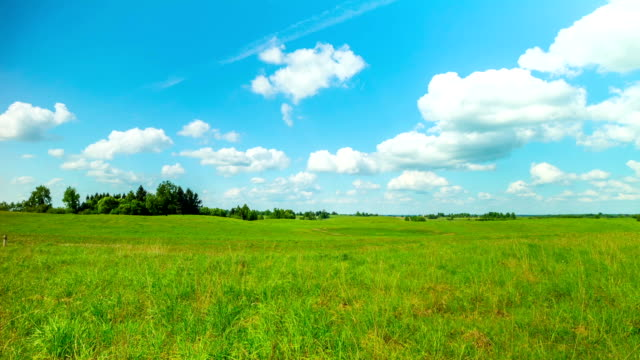 summer landscape, panoramic time-lapse video