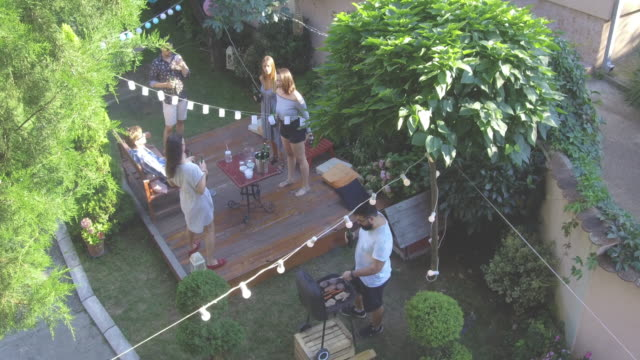 summer party outdoors - bbq stock videos and b-roll footage